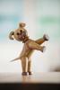 Billede af Happy - The Dog