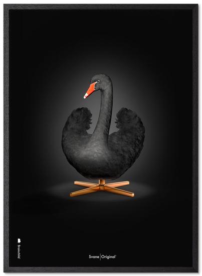 Billede af Brainchild Sort Svane plakat, 30x40