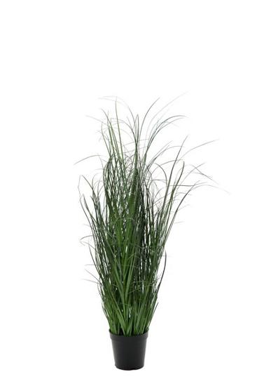 Billede af Græs, 90 cm