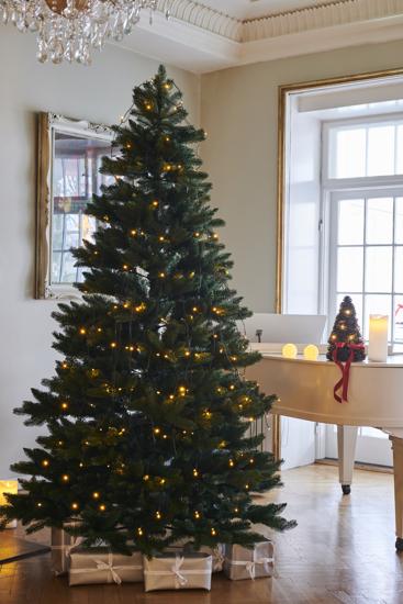 Billede af Anni Juletræ, 2,4 m