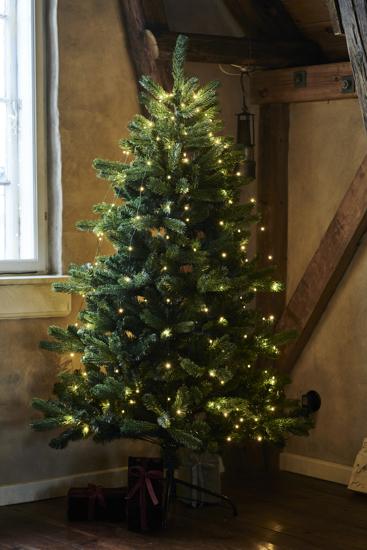 Billede af Anni Juletræ, 1,8 m