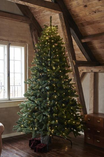 Billede af Anni juletræ, 2,1 m